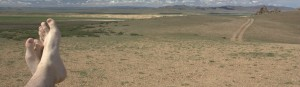 copy-cropped-mongolia-steppe-11.jpg